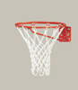 shiny new basketball rim and net
