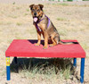 Dog Park Activity Table Equipment