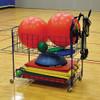 ToteMaster Open Top Ball Cart