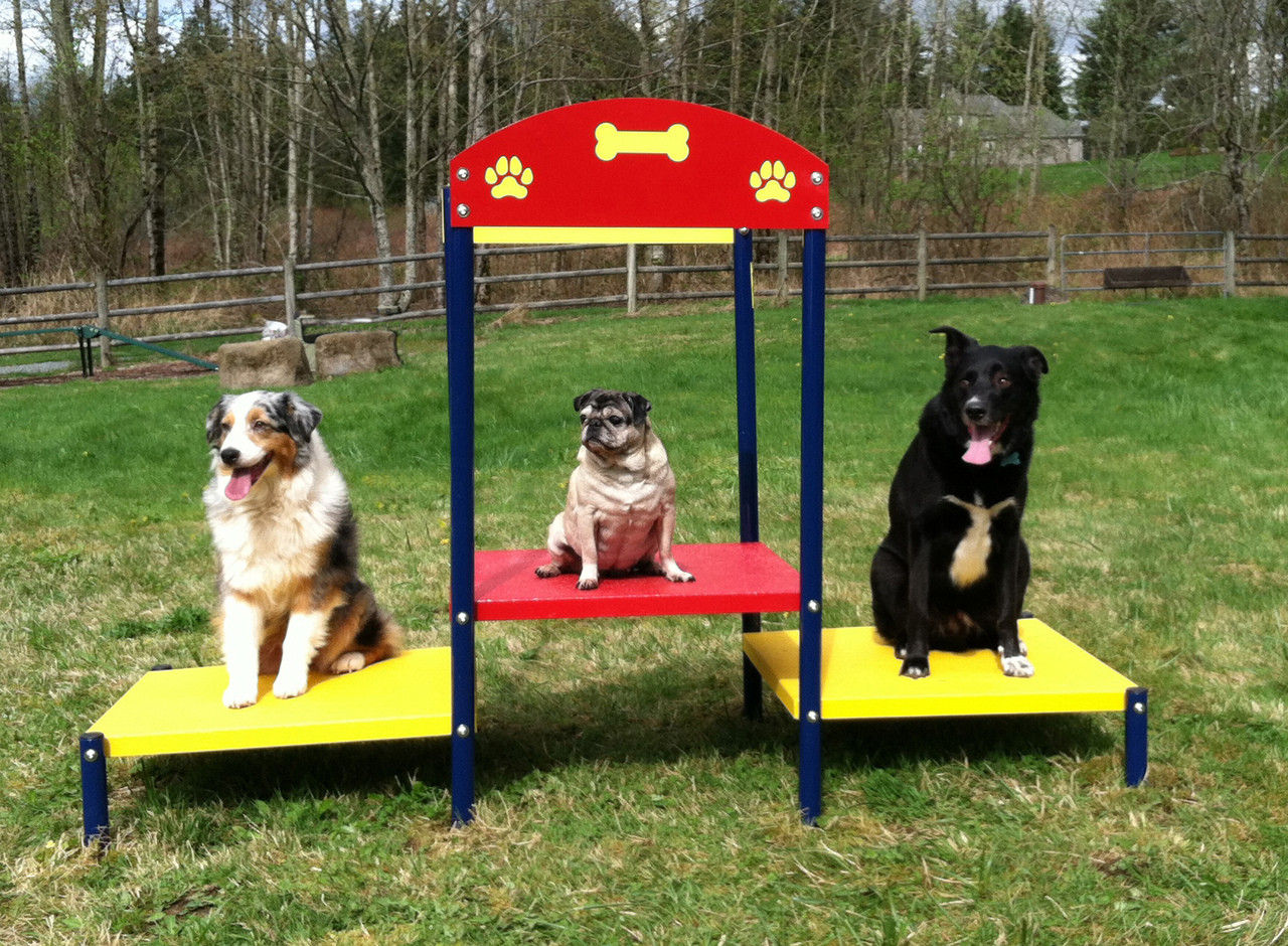 Dog Park Step Up Table