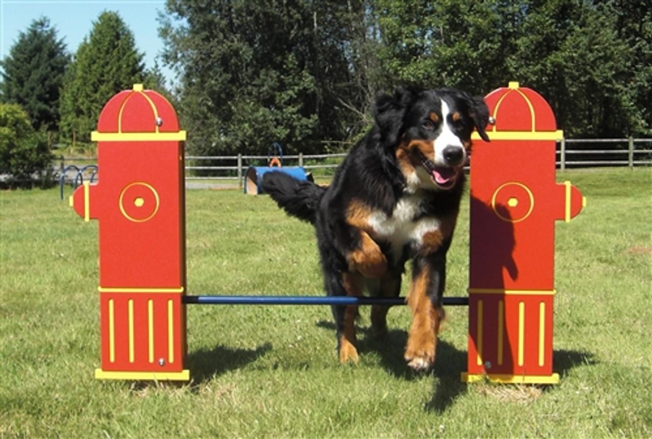 Adjustable Dog Park Jump Bar