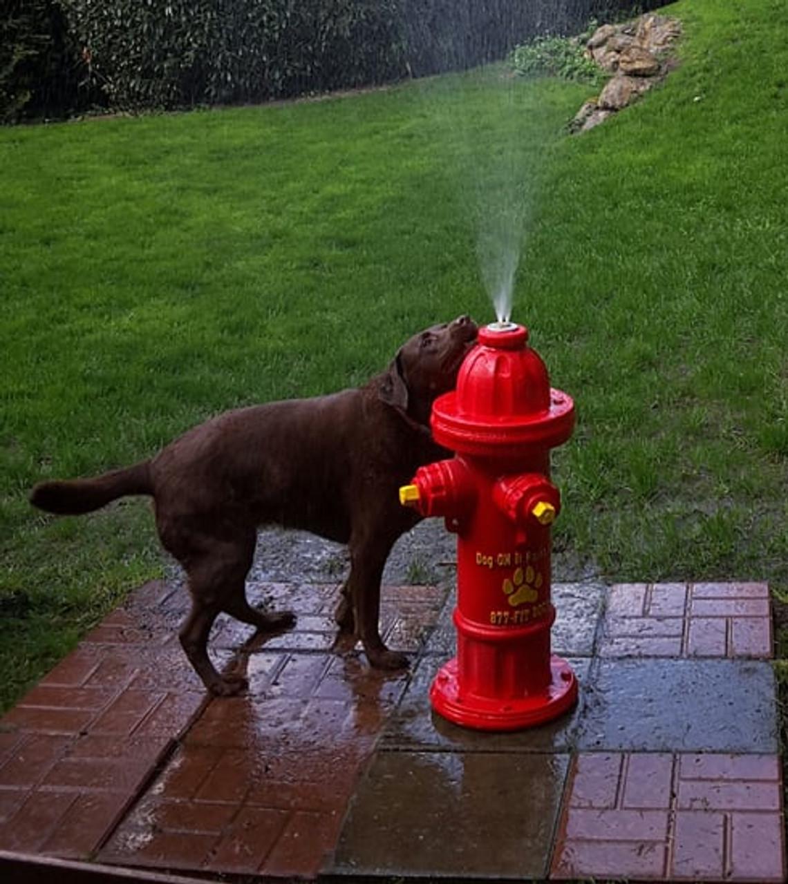 Top Spray Hydrant