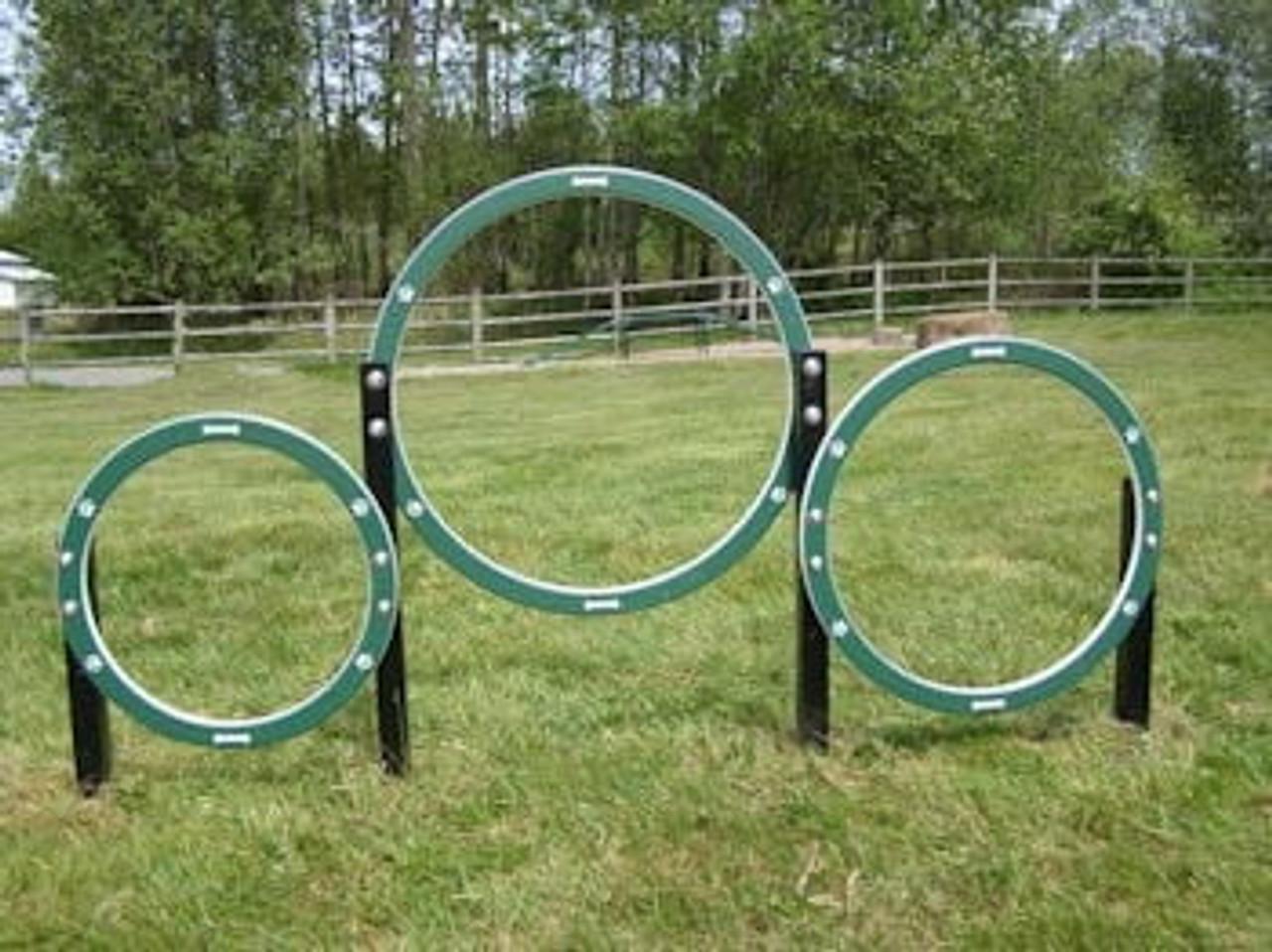 Dog Park Hoop Jump Activity