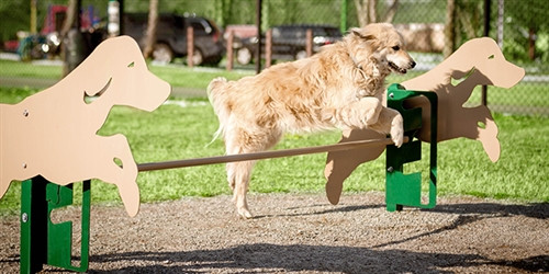 Novice Dog Park Kit