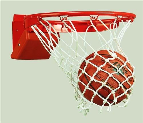 Pro Tech Competition Beakaway Bassket Ball Goal