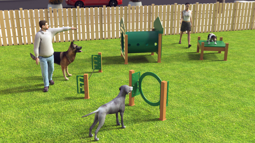 Recycled Novice Dog Park Kit