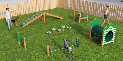 Intermediate Dog Park Ki]