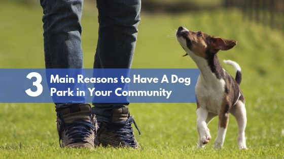 3 Main Reasons to Have A Dog Park in Your Community