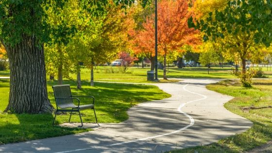3 Main Ways for Cities to Make Parks More Health Focused
