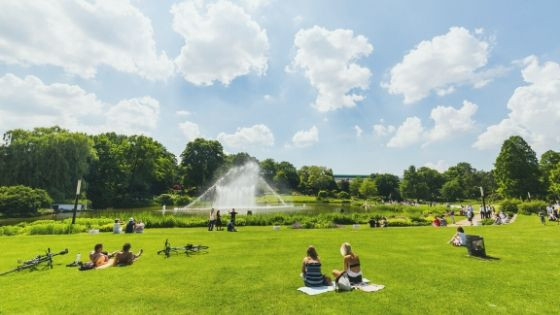 Elements of a Successful Public Park