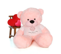 Pink Teddy Bear with Happy Valentine's Day T-shirt
