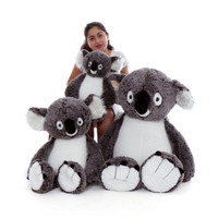 Stuffed Koalas Family from Giant Teddy