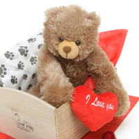 18in Mocha tubs Hug Car Package Teddy Bear