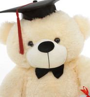 Super soft Cream Graduation Teddy Bear with Diploma
