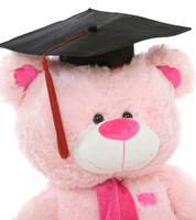 Pink Graduation Teddy Bear with Cap and Diploma