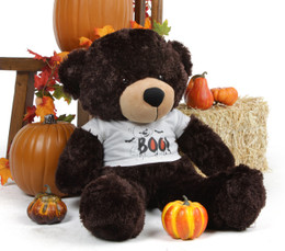 Brownie Cuddles is adorable in his Giant Teddy Halloween Shirt!