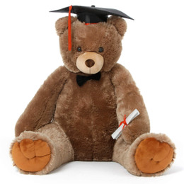 32in Graduation teddy bear Sweetie Tubs has diploma, black cap & bowtie