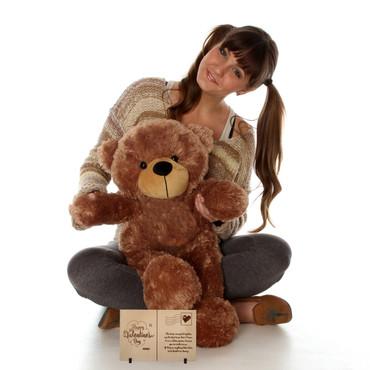 2 Foot Sunny Cuddles Mocha Teddy Bear