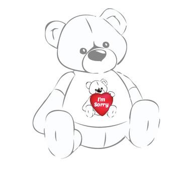Apology Teddy Bear T-shirt