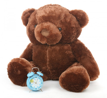 Enromous Chestnut Teddy Bear Buttercup Chubs