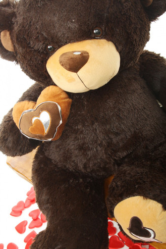 2.5ft Chocolate Brown Teddy Bear Sugar Pie Big Love