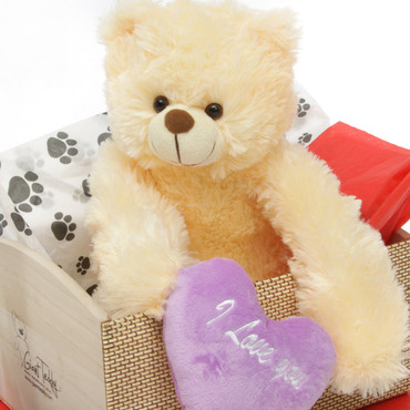18in Cream Teddy Bear Heart Conqueror Hug Care Package
