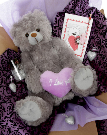 18in Grey Teddy Bear Hug Care Package