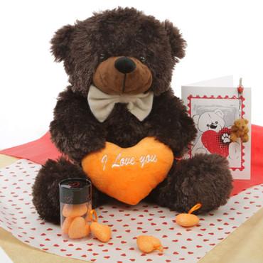 He Loves Me! Chocolate Brown Teddy Bear Hug Care Package 18in