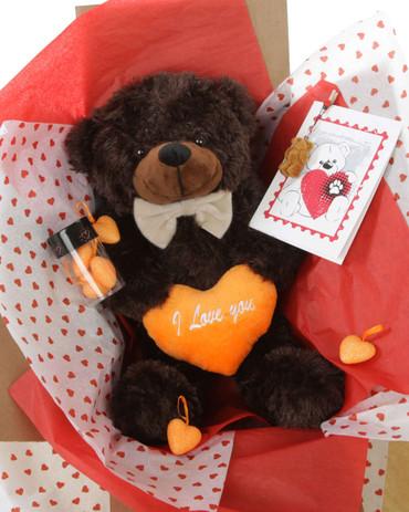 Hug Care Package with Brownie Cuddles Dark Brown Teddy Bear