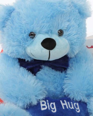 Hug Care Package with Happy Cuddles Blue Teddy Bear