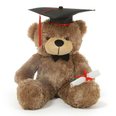 Sunny G Cuddles Mocha Graduation Teddy Bear with Cap and Diploma 26in