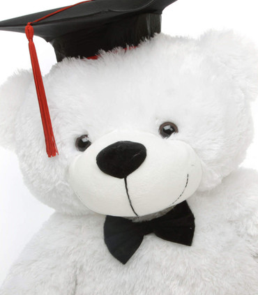 Super Soft White Teddy Bear in Graduation Cap and Black Bow