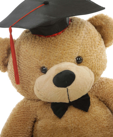 Big 3 Foot Graduation Teddy Bear in Amber Brown