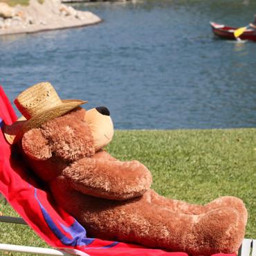 Big 4 feet Huggable Brown Teddy Bear