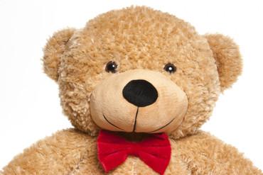 2 Foot Tall Gingerbread Edition Teddy Bear
