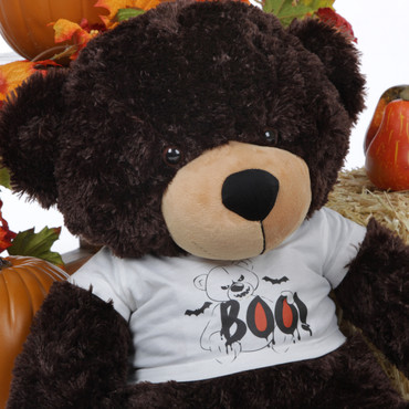 Brownie Cuddles is scary sweet in his Giant Teddy Halloween Shirt