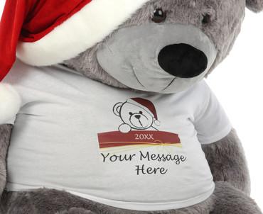 Personalized Silver Teddy Bear Christmas Gift Diamond Shags