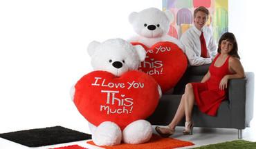 Valentine's Day Giant Teddy Bear