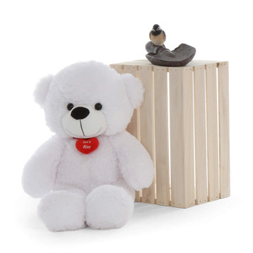 Super Soft White Teddy Bear with Red Heart Pillow Heart Let's Kiss Heart Necklace