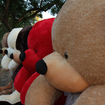 Beautiful Amber Brown Huge Teddy Bear 6 Foot