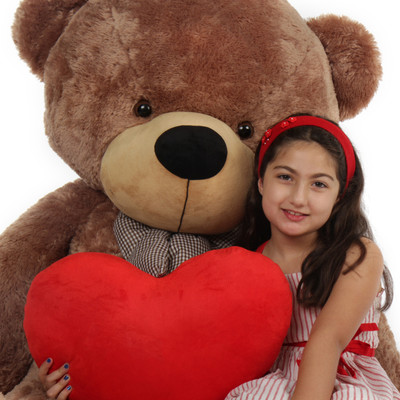 Giant Teddy Bear with Red Heart Pillow