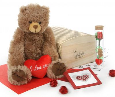 Heart Conqueror Mocha Teddy Bear Hug Care Package 18in