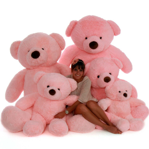 Pink Chubs Family