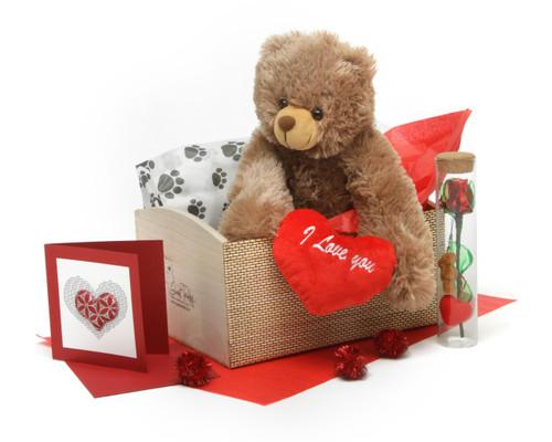 Hug Care Package 18in Mocha Brown Teddy Bear