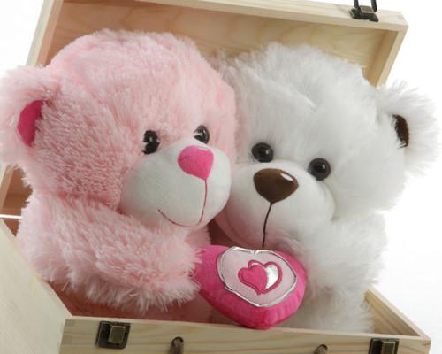 Love Bandits Big Love Teddy Bear Hug Care Package 18in