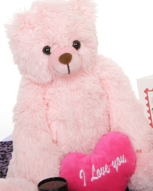 18in Pink Tubs Hug Care Package Teddy Bear