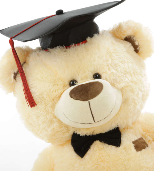 Vanilla Cream Colored Graduation Teddy Bear (Close Up)