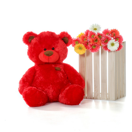 Super Soft Red 27 Inch Tall Big Teddy Bear