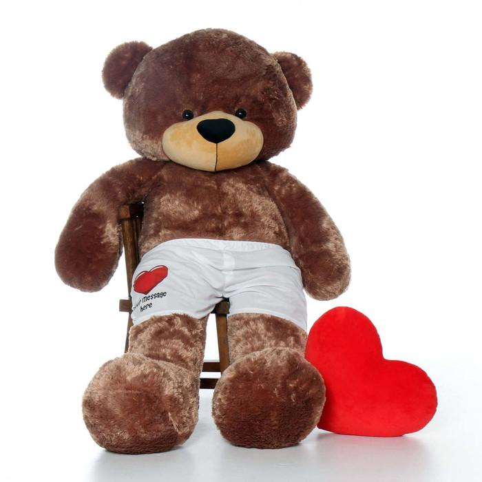 6 Super Soft Mocha Brown Teddy Bear with Custom Boxers