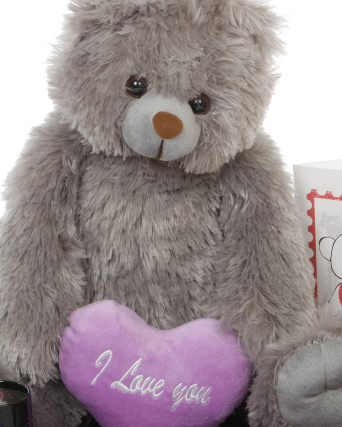 Gimme Some Lovin Grey Teddy Bear Hug Care Package 18in